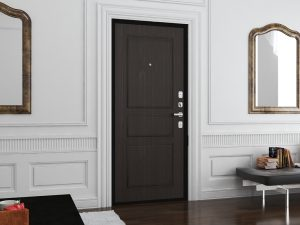 Двери бытовые Премиум Плюс